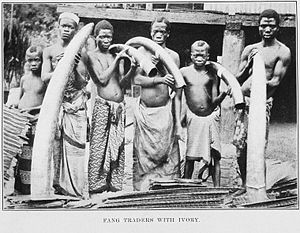 Fang traders with ivory. From The fetish folk ...