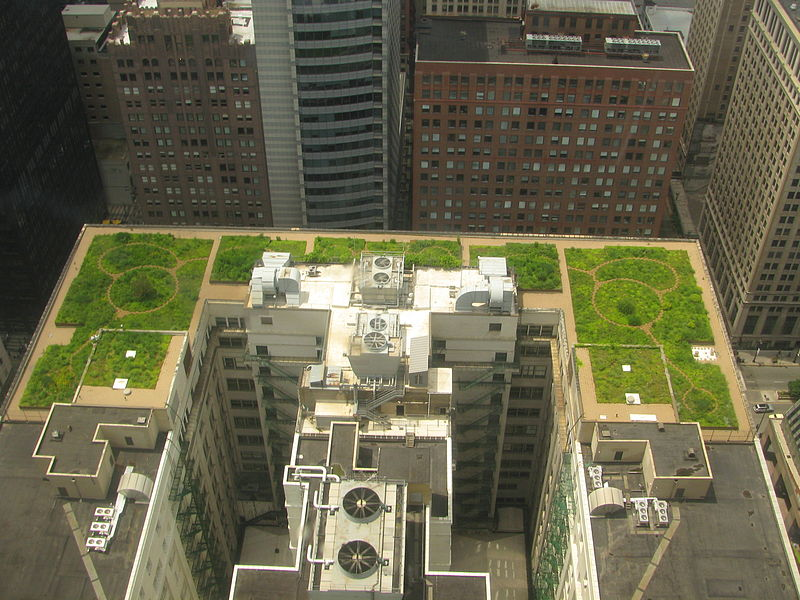 20080708 Chicago City Hall Green Roof.JPG
