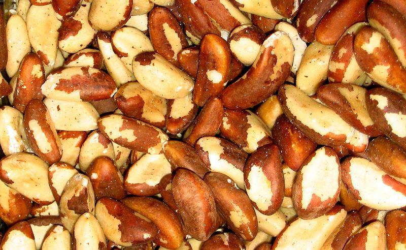 File:Brazil nuts.jpg