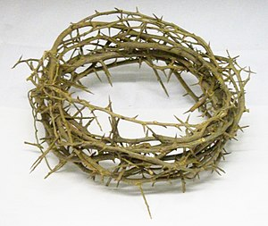 English: A crown of thorns in the stores of Be...