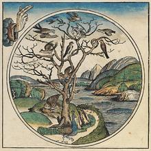 wiki liste geflugelter worte