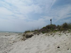 English: Sand Dunes in Myrtle Beach