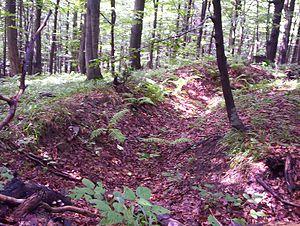 Trench in Bieszczady cm01