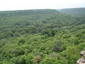 English: View of Forest around Hinglaj Fort in...