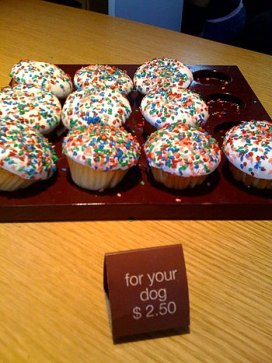 Pupcakes (dog-food cupcakes) from Sprinkles Cu...