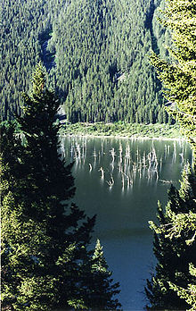 Quake Lake Wikipedia