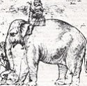 Hanno, 1514; nach einer (verschollenen) Zeichnung von Raffael