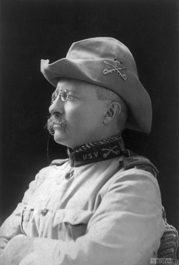 English: Col. Theodore Roosevelt. Crop of Imag...