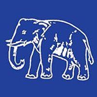 Elephant1.jpg