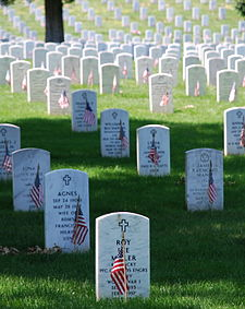 Gravesites with the American Flag on Memorial Day