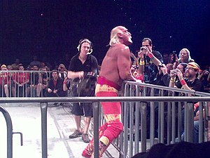 wrestling legend hulk hogan