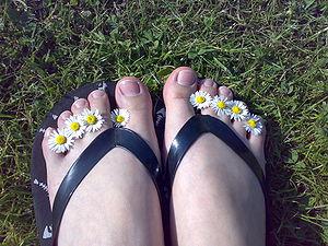 Sheepo's flip-flops
