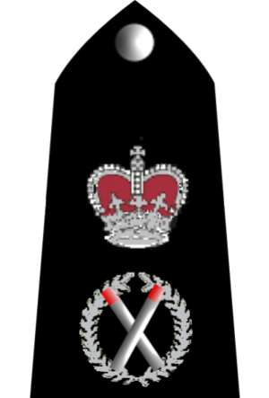 English: UK Police Chief Constable rank markings