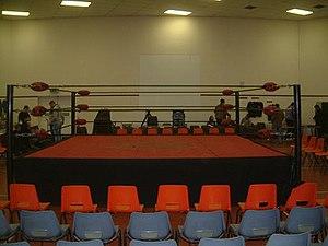 Slam Wrestling Training Ring