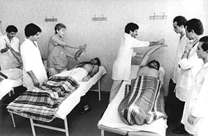 Physical therapy education in the 1980's