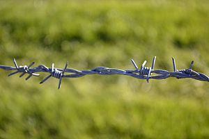 English: Ex-Iron Curtain barbed wire.