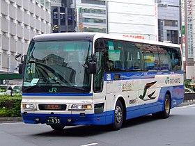 Jrbuskanto-momijigo-20070723.jpg