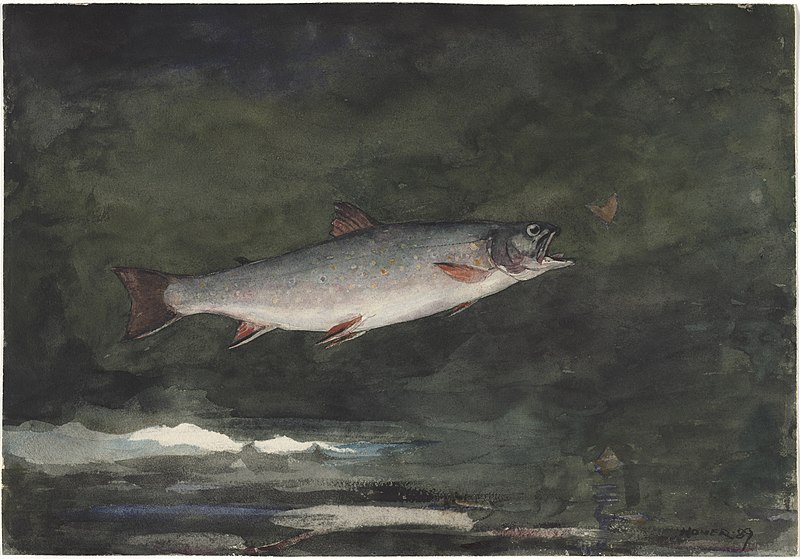 File:Winslow Homer - Leaping Trout (1889).jpg