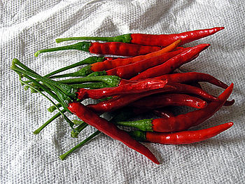 Fresh red chile de árbol chili peppers