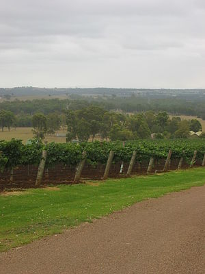 English: Hunter Valley. Taken by Dudesleeper o...