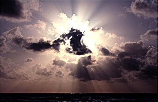 All sky Rays
