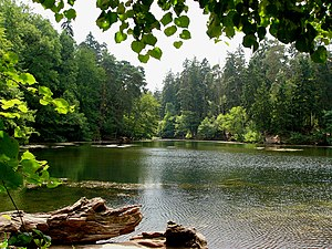 Donop's Pond in Teutoburg Forest, Germany