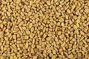Fenugreek seeds.