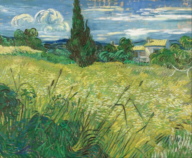 Vincent van Gogh - Green Field
