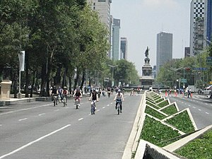 English: Bicycles traveling on Paseo de la Ref...