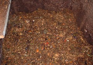 Home compost after first turning (1 week) Cate...