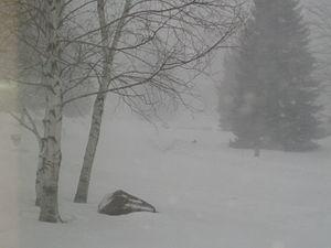 English: Minnesota Snow Storm