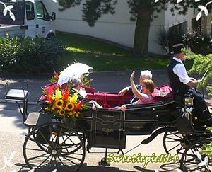English: The Bride & The Groom in a Chariot on...