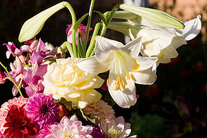 Bouquet of flowers apr07