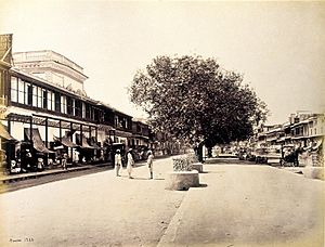 English: Chandni Chowk, Delhi, 1863-67.