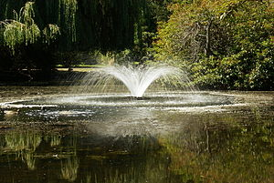 A fountain in Beacon Hill Park. Sony Alpha A10...