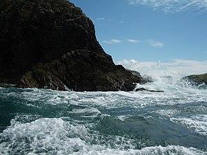 English: Ramsey Island: rough water near Trwyn...