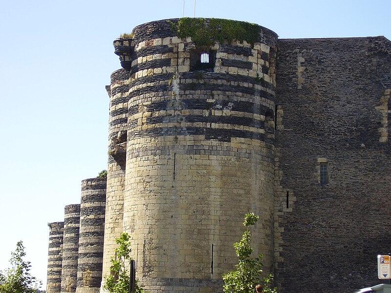 Château d'Angers 2008 PD 02