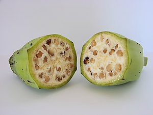 A photograph of the inside of an unripe wild-t...