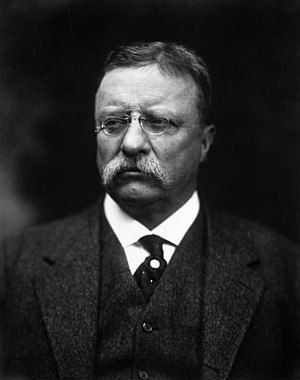 Theodore Roosevelt, former President of the Un...