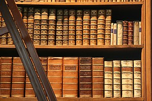 Historic works in a Bookshelf in the Prunksaal...