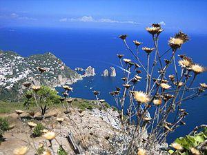View from Monte Solaro towards the Faraglioni