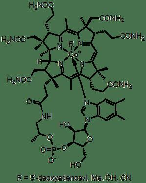 Vitamin B12  Wikipedia