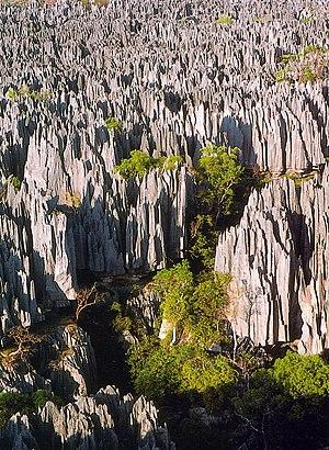 Tsingy de Bemaraha Strict Nature Reserve in Ma...