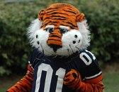 Aubie, Auburn's popular highly-animated costum...