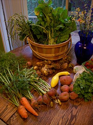CSA Haul the First
