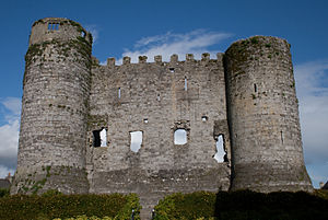 West side of Carlow Castle