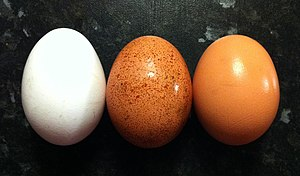 English: Three chicken eggs of contrasting col...
