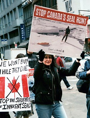 English: Friends of Animals - Stop the Seal Hunt