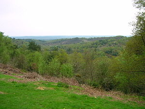 The Devil's Punchbowl valley, Hindhead, Surrey.