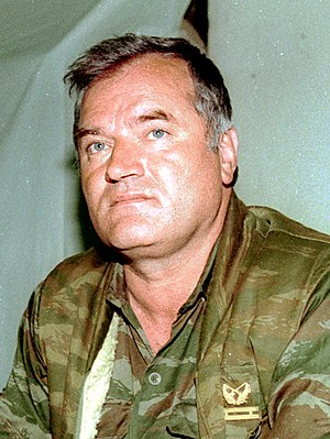General Ratko Mladić during UN-mediated talks ...